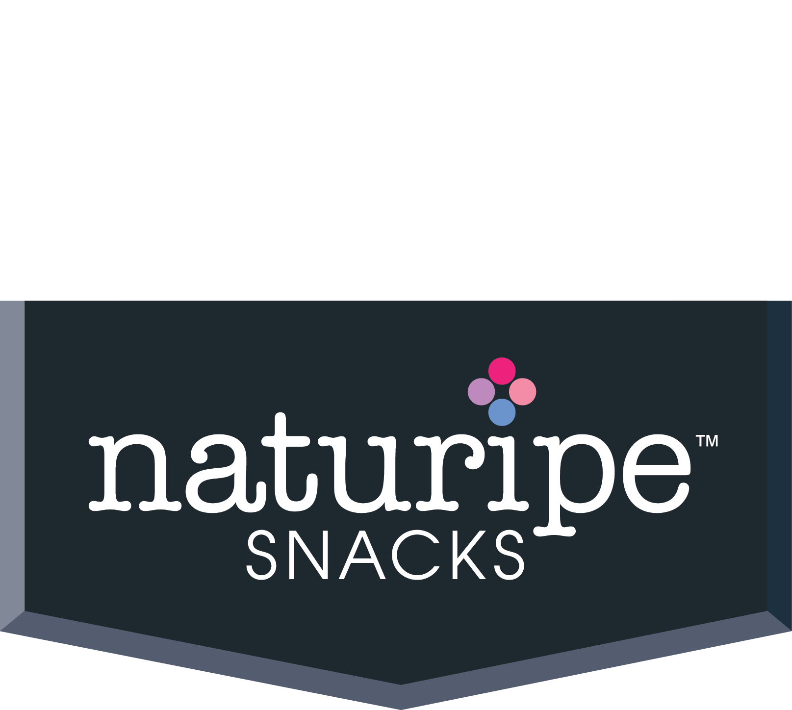 NaturipeSnackLogowithChevron_FINAL.png